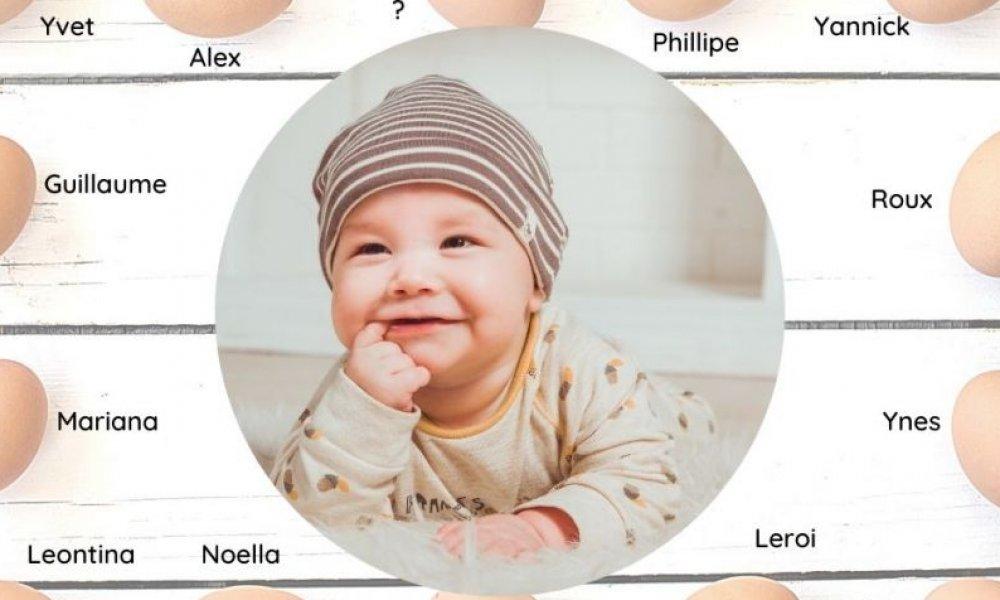 La thérapie de don d'ovocytes expliquée